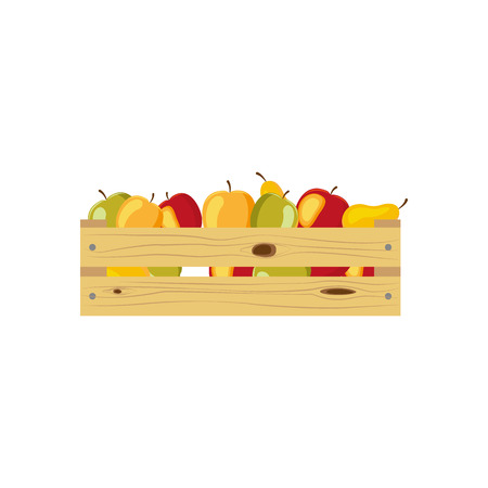 Wooden box of vegetables - carrot, pumpkim, corn, cabbage, potato, cartoon vector illustration isolated on white background. Carrot, pumpkim, corn, cabbage, potato vegetables in wooden storage box
