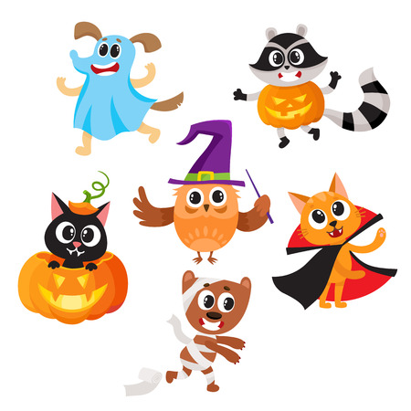 Set of cute funny animal characters dressed in Halloween costumes, cartoon vector illustration isolated on white background. Set of animal characters dressed as ghost, witch, mummy celebrate Halloween Illustration