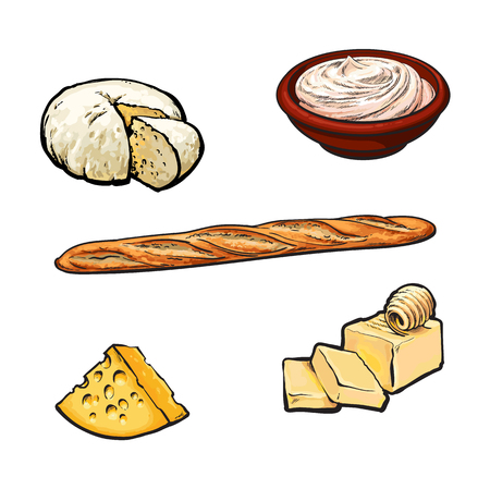 Vector sketch cartoon sour cream in ceramic brown pot or plate, soft brie and yellow porous cheese, butter bar with clices and french baguette bread loaf. Isolated illustration on a white background. Фото со стока - 85691838
