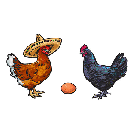 vector chicken hen brown egg, dark blue chicken and brown chicken in sombrero sketch set isolated. Illustration on a white background