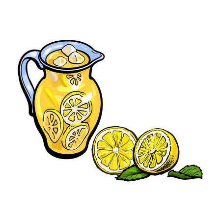vector sketch cartoon lemonade glass jug, pitcher with handle, sliced lemons with leaves set. Isolated illustration on a white background. Fresh juicy cirtus drink. Healthy organic beverage. Ilustracja