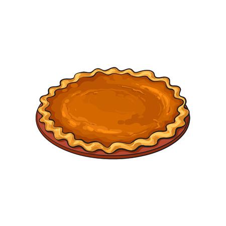 手描きのカボチャのパイ、伝統的な感謝祭の食品、白い背景で隔離スケッチ スタイルのベクトル図です。スケッチ スタイル、手描きのカボチャのパ  イラスト・ベクター素材