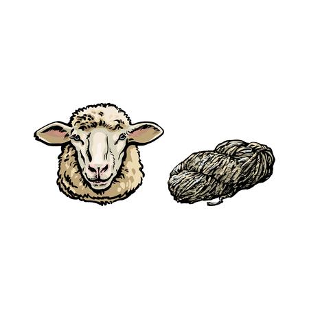 벡터 스케치 만화 스타일 양 머리와 cutted 양고기 양모를 설정합니다. 흰색 배경에 고립 된 그림입니다. 큰 트위스트 뿔 손으로 그린 동물입니다. 축사