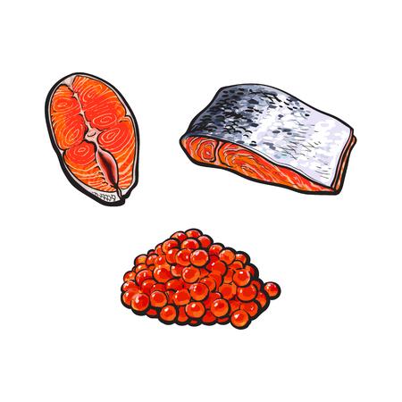 벡터 스케치 바다 연어 물고기 고기 필렛 스테이크, 상단 및 측면보기와 캐 비어에서 피부없이 설정합니다. 흰색 배경에 고립 된 그림입니다. 해물 진