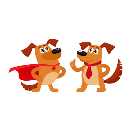 Two funny brown dog characters, one standing in superhero cape, another showing thumb up, cartoon vector illustration isolated on white background. Two funny house dog characters Illustration