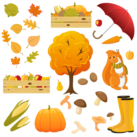 Big fall, autumn set - umbrella, rain boots, squirrel, fruits and vegetable box, harvest, cartoon vector illustration isolated on white background. Cartoon set of fall, autumn objects, decoration elements
