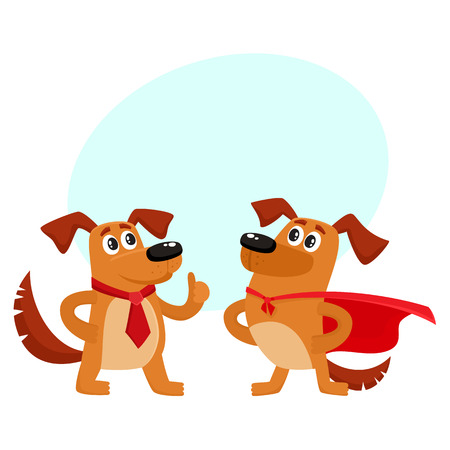 Two funny brown dog characters, one standing in superhero cape, another showing thumb up, cartoon vector illustration isolated on white background with speech bubble