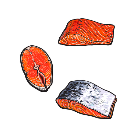 vector sketch style sea red salmon fish meat fillet steak with, without skin from top side view set. Isolated illustration on a white background. Seafood delicacy, restaurant menu decoration object