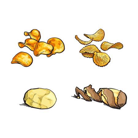 벡터 스케치 만화 익은 원시 나선형 트위스트 껍질, 피리와 간단한 칩 세트와 함께 노란색 감자를 벗 겨. 흰색 배경에 고립 된 그림입니다. 일러스트