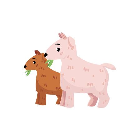 벡터 플랫 만화 시골 농장 농촌 동물 장면. 녹색 잔디 방목하는 goatling 함께 흰색 염소입니다. 흰색 배경에 고립 된 그림입니다. 스톡 콘텐츠 - 86959369