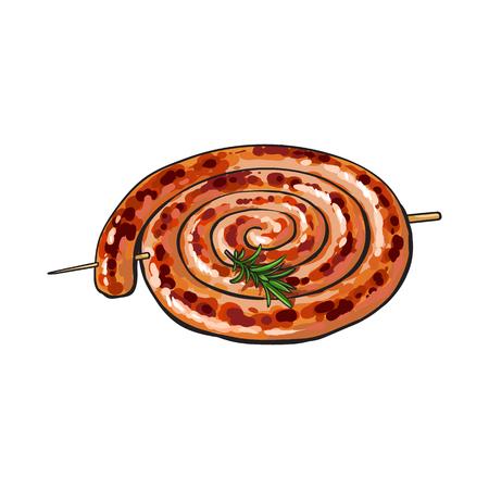 Świeżo piec na grillu, barbequed Cumberland kiełbasa staczająca się w zwitce, nakreślenie stylowa wektorowa ilustracja na białym tle. Realistyczny rysunek strony z grillowaną, smażoną, grillowaną kiełbasą Cumberland
