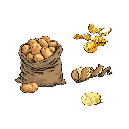 ベクター スケッチ漫画熟した生皮をむいた黄色いジャガイモ ツイスト スパイラル皮、フルーティングを施されたチップとポテトのセットとバッグ