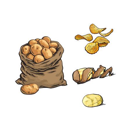 벡터 스케치 만화 익은 원시 나선형 트위스트 껍질, 피리 칩과 감자 세트와 가방 노란색 감자를 벗 겨. 흰색 배경에 고립 된 그림입니다. 일러스트