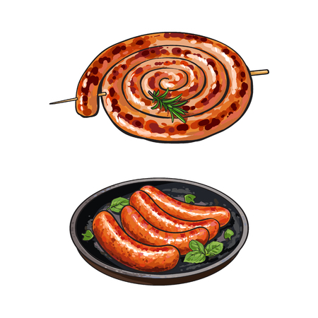 Freshly grilled, barbequed sausages, rolled in coil and fried on pan, sketch style vector illustration on white background. Realistic hand drawing of grilled, fried, barbequed sausages, long and short