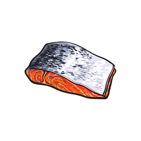 vector sketch cartoon style sea red salmon fish meat fillet steak front side view. Isolated illustration on a white background. Seafood delicacy, restaurant menu decoration design object concept