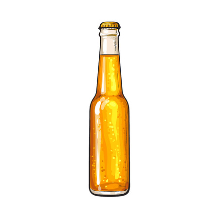 Hand drawn bottle of cold beer, colorful sketch style vector illustration isolated on white background. Hand drawn bottle of ice cold beer, lager, ale, Oktoberfest symbol Illustration