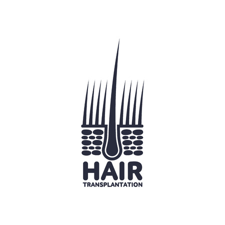 Hair follicle in hair bulb with human skin, dermis. Medical folicle transplantation company logo, brand icon pictogram design. Vector flat silhouette illustration isolated on a white background.