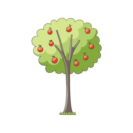 벡터 녹색 단풍과 풍요의 뿔이 사과 나무에 평평한 만화 빨간 사과. 흰색 배경에 고립 된 그림입니다. 디자인을위한 인기있는 정원 식물 일러스트