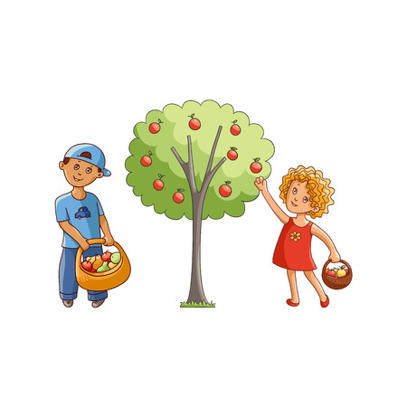 vector flat children at garden scene set. Girl holding basket collecting apples from apple tree, boy golding basket with fruits and vegetables. Isolated illustration on a white background. Illustration