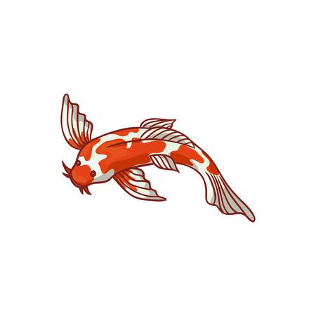 Japanese, Asian koi carp, goldfish, gold fish, top view flat style cartoon vector illustration isolated on white background. Japanese koi carp, golden fish drawing Ilustração