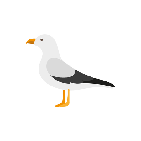 Side view portrait of seagull, albatross, flat style cartoon vector illustration isolated on white background. Simple flat style cartoon vector illustration of standing seagull