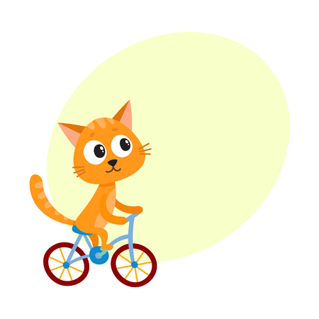 Cute little cat, kitten character riding bicycle, cycling, cartoon vector illustration with space for text. Little baby cat, kitten animal character riding bike, bicycle, cycling happily