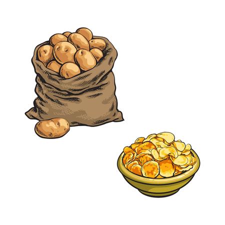 벡터 스케치 만화 익은 원시 감자 가방 및 칩 세트와 접시. 흰색 배경에 고립 된 그림입니다. 야채 신선한 천연 제품, 건강한 라이프 스타일, 개념을 먹