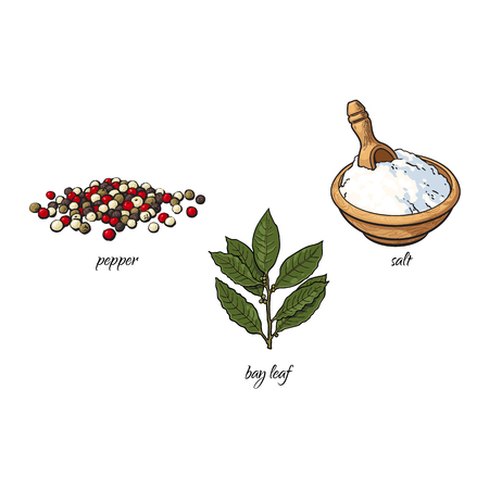 vector flat cartoon sketch hand drawn Spices, seasoning, flavorings and kitchen herbs set. Bay leaves with stem, black pepper white salt. Isolated illustration on a white background