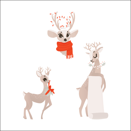 vector flat cartoon christmas reindeer holding blank paper scroll, deer in red scarf head and holding present box winter holiday animal full lenght set. Isolated illustration on a white background.