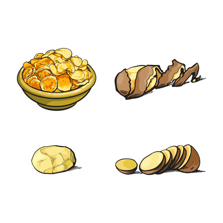 벡터 스케치 만화 익은 원시 나선형 트위스트 껍질 벗겨진 된 감자와 감자, 얇게 썬된 감자와 칩 세트와 접시. 흰색 배경에 고립 된 그림입니다.