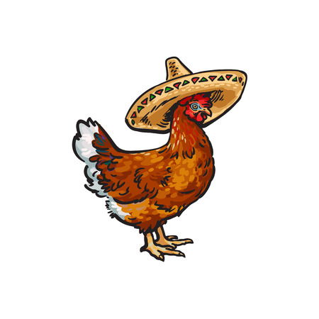 vector cartoon hand drawn sketch brown colored chicken in sombrero. Isolated illustration on a white background. Farm poultry bird