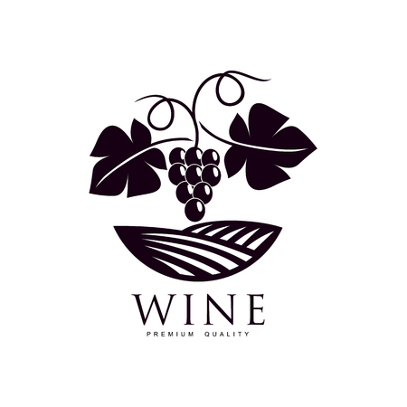 grapevine with ripe grapes, leaves twig on background of field of vineyard. Elegant Company logo, brand icon design. Isolated illustration on a white background. Stock Photo