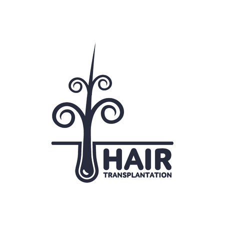 Stylized curly Hair follicle in hair bulb with human skin, dermis. Medical folicle transplantation company logo, brand icon design. Vector silhouette illustration isolated on a white background.