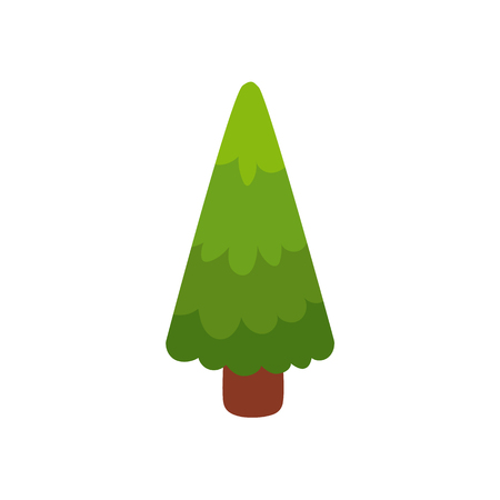 Flat cartoon, comic style green fir tree, evergreen, pine, vector illustration isolated on white background. Flat style fir tree, pine, Christmas greeting card decoration element