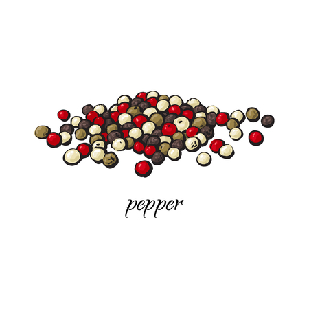 Pile of black, red and green pepper, peppercorns with caption, sketch style vector illustration isolated on white background. Hand drawn pepper, black, red, green and white