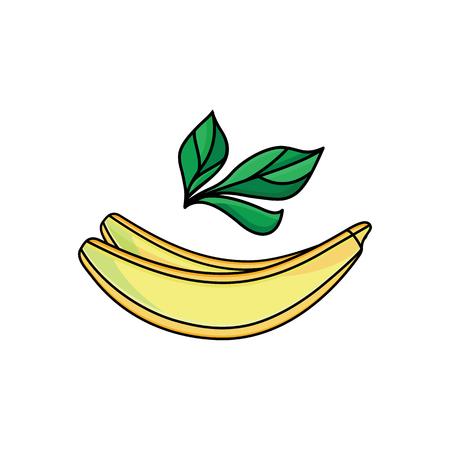Vector flat sketch style yellow fresh ripe banana. Isolated illustration on a white background. Healthy vegetarian eating, dieting and lifestyle design object.