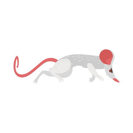 Rat domestique comme émetteur, porteur de maladies dangereuses, maladies, parasites, illustration de vecteur de dessin animé isolé sur fond blanc. Rat, rongeur, transmetteur de maladie, illustration de dessin animé de vue de côté Banque d'images - 90810218