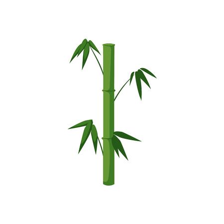 벡터 플랫 만화 스타일 일본 기호 개념입니다. 녹색 대나무 줄기 녹색 잎 아이콘 이미지와 막대기. 흰색 배경에 고립 된 그림입니다. 일러스트