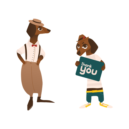 Two dachshund, badger dog characters wearing clothes and holding thank you sign, flat vector illustration isolated on white background. Couple of humanized badger dog characters, mascots