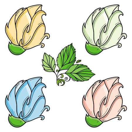 vector hand drawn sketch style elegant vintage red, white yellow shade rose wild flower with green leaves and blooming blossom set. Isolated illustration on a white background.