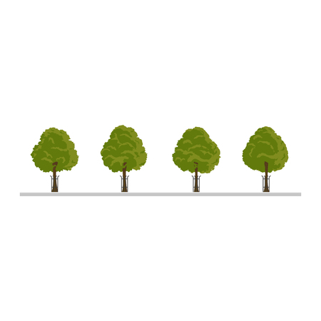 City tree, bush, hedge decoration elements. Flat style illustration on white background. Collection of green tree, city landscape elements.