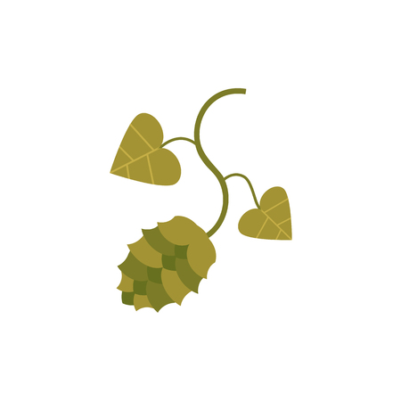 Green hop plant, flat style icon, cartoon vector illustration
