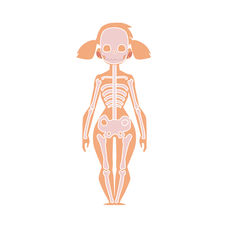 Educational anatomy chart infographics of human skeleton, female body, cartoon vector illustration isolated on white background. Human skeleton, anatomy chart for kids with female body