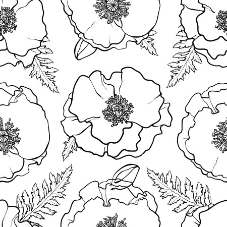 Vector hand drawn sketch monochrome illustration of red poppy flowers with opened blossoms, leaves seamless pattern. Floral natural decoration background, backdrop element for fabric, textile design.