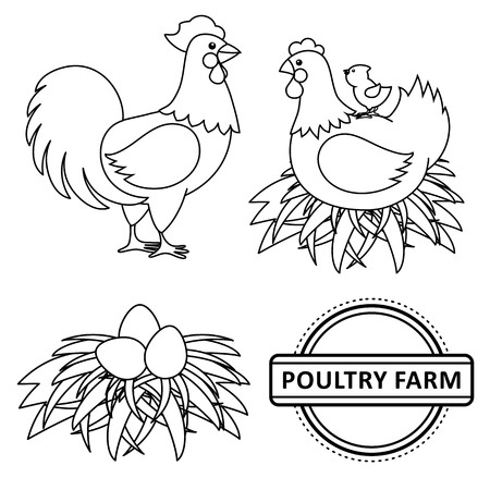 Vector chicken set. Monochrome contour rooster, cock, hen chicken, eggs in hay nest, yellow small chick, poultry farm. Isolated illustration, white background. Coloring book for children design. Ilustração