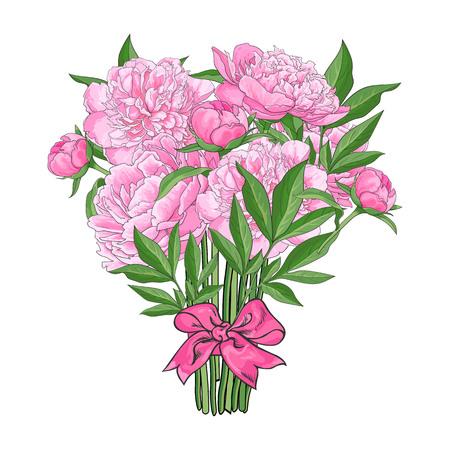 De bos, boeket van roze pioenbloemen klopte met lint, schetsstijl, hand getrokken vectordieillustratie op witte achtergrond wordt geïsoleerd. Handgetekende vector pioen bloemen vastgebonden met lint