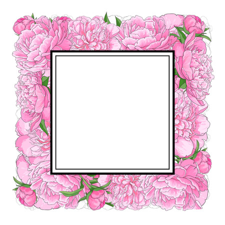 Square frame of pink peony flowers with empty, blank space for text, sketch, hand drawn vector illustration isolated on white background. Hand-drawn vector peony flowers forming square frame
