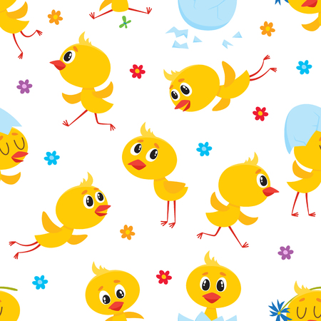Easter seamless pattern, backdrop, textile design with cute baby chickens, egg shells and flowers, cartoon vector illustration on white background. Baby chicken seamless pattern, Easter design.