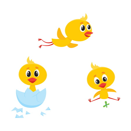 Vector cartoon cute baby chicken characters set. Yellow small funny chicks flying, hatching from egg and playing with butterfly. Flat bird animal, isolated illustration on a white background. Illustration