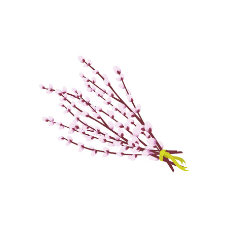 Bunch of spring pussy willow branches tied with a green ribbon, Easter decoration element, cartoon vector illustration isolated on white background. Cartoon Easter bouquet of willow branches